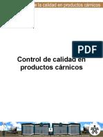 Control de calidad en prod carnicos.pdf