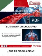 FISIOANATOMIA ARTERIAS.pptx