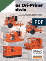 CorpInfo-Sp.pdf