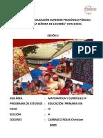 DESEMPEÑO, COMPETENCIA Y PROPÓSITO S1.pdf