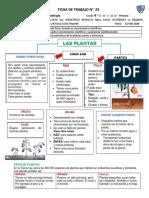 N° 23 FICHA CIENCIA Y TECNOLOGÍA-LAS PLANTAS