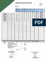 DDR MEI 2020.pdf