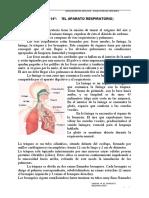 UNIDAD 14_ EL APARATO RESPIRATORIO-convertido