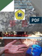 Peluang Bisnis Beternak Lele Sangkuriang