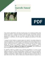 DESARROLLO NATURAL DE LA IGLESIA