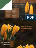 metodos de inventario ecologicoSIN V.pptx