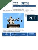 080319_Perito Judicial en Prevención de Riesgos Laborales