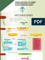 METABOLISMO.BIOFISICA
