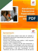 aee_di.pdf