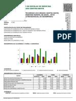 perf_2019_43541.pdf