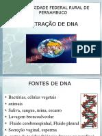 1ª VA Extração de DNA, Eletroforese e PCR-2012 (2)
