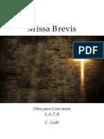 Missa brevis C. Galli (Partitura e partes coro e cordas.)