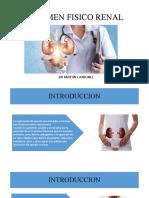 Examen físico renal