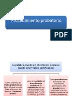 Procedimiento probatorio 2019
