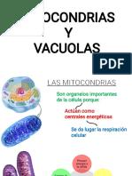 Mitocondrias y Vacuolas