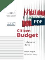 Citizen Budget 2019en.pdf