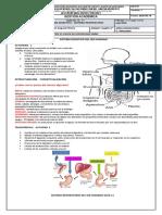 naturales_4_2semestre.pdf