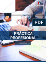 Práctica Profesional_2018 (1).pdf