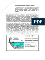 Tratamiento de aguas residuales con plantas