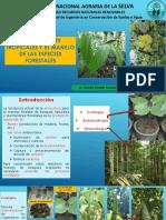 Ecologia bosques (CSA)b1