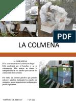 COLMENA (1)