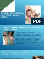 ATENCION  DE ENFERMERIA AL RECIEN NACIDO NORMAL (1)