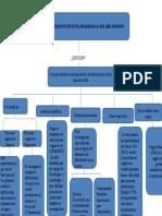 Mapa Conceptual Procesos Cognoscitivos