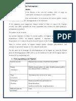 rapport-de-stage (1)
