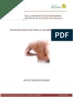 RUTINA DE EJERCICIOS COLUMNA.pdf