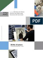 VMS. Conoscenze pratiche per i musei