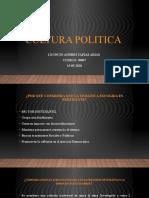 RESPUESTAS CULTURA POLITICA Y DEMOCRACIA