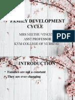 Family development cycle.pptx