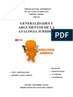 GENERALIDADES DE LA ANALOGIA JURIDICA (05)