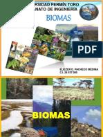 presentacion-de-david-biomas-160521134158.pdf