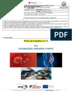 Ficha 2 STC_NG7_DR1 (19_20 ) sobre o documentário relacionado com fecundação,gravidez e parto_Turma D