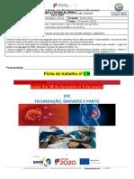 Ficha 2B STC_NG7_DR1 (19_20 ) Turma D