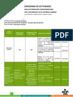 CRONOGRAMA  DE ACTIVIDADES  DEFINITIVO
