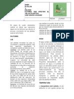 ACTIVIDAD FACTORES QUE AFECTAN A LAS PLANTAS.docx