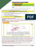 GUÍA 602-603-604-606 CIENCIAS NATURALES