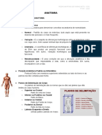 Anatomia P1M1