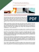 5 elements portugues-convertido.pdf