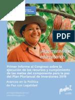Informe Congreso Avances PPI 2019