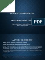 Introduccion Rodrigo Loyola PPT N° 6 (1)