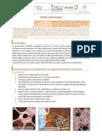 Scheda tecnica PA IZSVe.pdf