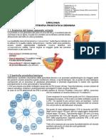 Urologia 1