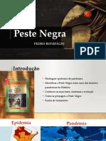Peste negra_apresentacao final.pptx