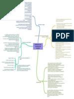 tableros_de_control_de_mando  mapa mentaL.pdf