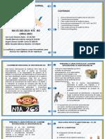 CARTILLA AUDITORIA INTERNA- ACTIVIDAD 03