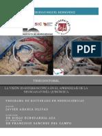 DISECCION EN NEUROANATOMIA.pdf