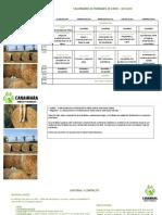 Calendario actv. y materiales - La Tribu 29jun-03jul - Prados Monteros